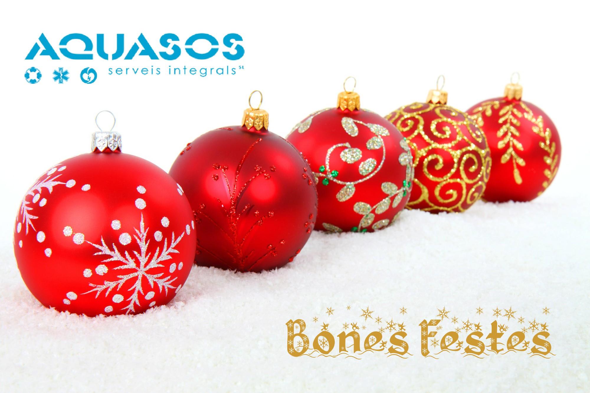 Us desitgem unes Bones Festes